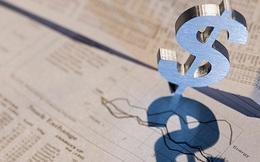 Không mặn mà mua cổ phiếu phát hành thêm, hàng loạt lãnh đạo Năm Bảy Bảy muốn chuyển nhượng quyền mua