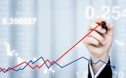 TTF lại tăng trần, VN-Index tăng nhờ VCB và VIC, thanh khoản đạt 5.000 tỷ đồng