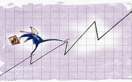 Săn cổ phiếu đầu ngành nới room ngoại năm 2017