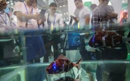 """Nguy cơ ở trung tâm công nghệ châu Á: Sau cơn sốt startup là bong bóng """"vườn ươm khởi nghiệp"""""""