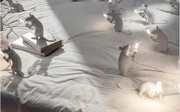 """Cách trang trí căn nhà """"chất lừ"""" bằng những chiếc đèn ngộ nghĩnh mang hình thù con vật"""