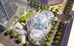Trong khi 54 bang 238 thành phố tranh nhau mời Amazon mở trụ sở 5 tỷ USD, tại sao 7 bang này lại chẳng mấy mặn mà?