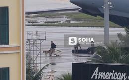 Đặc vụ Mỹ xuống sân bay Đà Nẵng, mang theo chó nghiệp vụ và thiết bị chuyên dụng