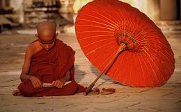 Chuyện khát nước và bài học từ Đức Phật: Cuộc đời vốn phẳng lặng như hồ nước, đừng nóng vội làm gì!