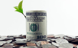 Lịch chốt quyền nhận cổ tức bằng tiền của 8 doanh nghiệp