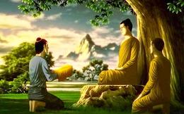 11 lời răn từ Đức Phật khiến hàng triệu người thức tỉnh, dù là ai cũng nên đọc thật kỹ càng