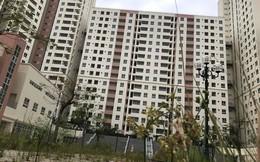 TPHCM đấu giá khu tái định cư nghìn tỷ bỏ hoang