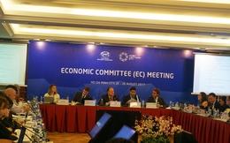 SOM 3: Ủy ban Kinh tế APEC họp phiên toàn thể lần thứ 2