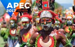 [INTERACTIVE] 8 điều đặc biệt về nền kinh tế nhỏ nhất, chủ nhà của APEC 2018