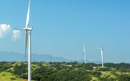 Tập đoàn đầu tư vào CII để mắt tới năng lượng tái tạo ở Việt Nam