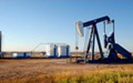 OPEC sẽ mất thị phần vào tay đối thủ nếu tiếp tục cắt giảm sâu