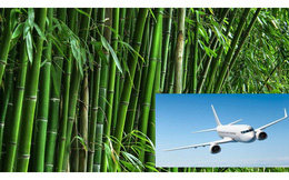 """Để có thể """"cất cánh"""", Viet Bamboo Airlines của tỷ phú Trịnh Văn Quyết sẽ phải """"xếp hàng"""" rất lâu sau AirAsia, Vietstar Airlines hay SkyViet"""
