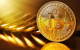 """Bitcoin chỉ là """"tép riu"""" trên sân chơi tài sản toàn cầu?"""