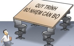 Chính phủ chỉ đạo thanh tra việc bổ nhiệm cán bộ