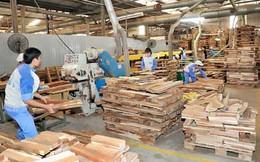 Xuất khẩu gỗ vào châu Âu nhiều triển vọng khả quan