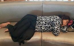 Cư dân mạng phát sốt với bức ảnh bộ trưởng ngủ trong phòng chờ sân bay