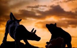 """PNJ, VCS, VJC tiếp tục phá đỉnh, thị trường """"đỏ vỏ xanh lòng"""" trong ngày review ETFs"""