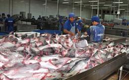 Hội chợ cá tra đầu tiên tại Hà Nội