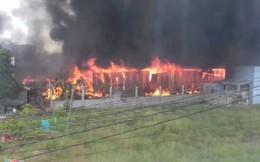 Năm giờ dập 'biển lửa' tại vựa phế liệu rộng 1.000 m2 ở Long An