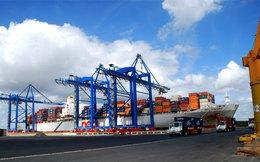 Cảng Đình Vũ (DVP) 6 tháng lãi 164 tỷ đồng, hoàn thành 53% kế hoạch cả năm
