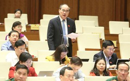 Đại biểu Quốc hội Nguyễn Thiện Nhân: Cần đưa mặt hàng rau-quả-hoa trở thành mặt hàng xuất khẩu chủ lực