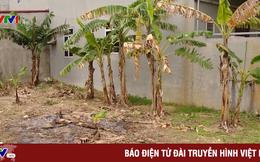 Kết luận vụ bán đất trái thẩm quyền tại Hưng Yên