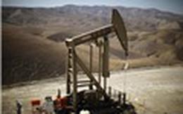 Triển vọng giá dầu: Nhà dầu tư lạc quan thị trường dầu khi giá tăng 5% vào tuần trước