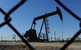 Chuỗi ngày tăng giá của dầu chấm dứt