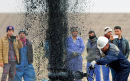 """""""Cơn sốt dầu thô"""" sẽ xảy ra rất sớm, các nhà đầu tư cần chớp lấy cơ hội"""