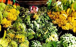 """Bộ Nông nghiệp lập cục mới mong """"giải cứu"""" nông sản Việt"""