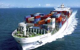 Lỗ hơn trăm tỷ quý 4, Công ty Vận tải và Thuê tàu biển Việt Nam đã âm vốn chủ sở hữu gần 500 tỷ đồng