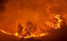 Cháy rừng lớn nhất lịch sử ở Hà Nội: Xác định nguyên nhân ban đầu
