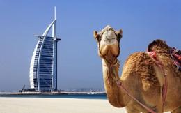Dubai sẽ có chính phủ vận hành bằng blockchain đầu tiên trên thế giới?