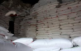 Quy định về đấu giá 89.500 tấn đường nhập khẩu
