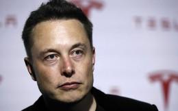 Elon Musk tuyên bố sẽ liên kết não người với máy tính trong 4 năm