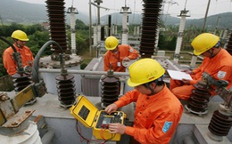 Tất cả các công trình điện Nhà nước đầu tư phải về tay EVN quản lý
