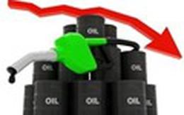 Giá dầu thô và giá xăng Mỹ: Một cơn bão nhưng 2 số phận