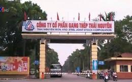 SCIC đã thoái toàn bộ 1.000 tỷ vốn góp tại Gang thép Thái Nguyên