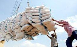 Xuất khẩu gạo tiếp tục giảm 20%