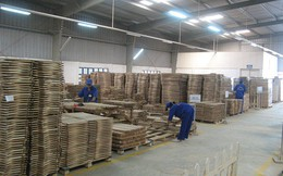 Xuất khẩu gỗ chắc chắn đạt 10 tỷ USD vào 2020