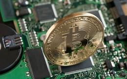 Chuyển từ đào khoáng sản sang đào bitcoin, cổ phiếu công ty này tăng tới 159% chỉ trong 2 ngày