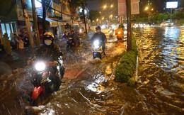TPHCM thuê đơn vị tư vấn thực hiện chống ngập đường Nguyễn Hữu Cảnh