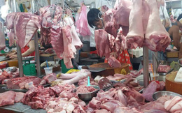 Thị trường thịt 18 tỷ USD, sao để nông dân nuôi heo kêu cứu?