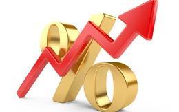 Giống cây trồng Trung Ương lãi kỷ lục từ khi niêm yết, EPS đạt 11.492 đồng