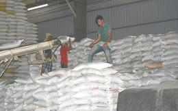 Việt Nam trúng gói thầu xuất khẩu gần 200.000 tấn gạo