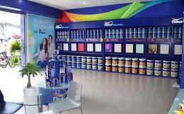 Đa sắc thị trường sơn Việt Nam