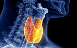 Chuyên gia nội tiết tư vấn cách phát hiện và phòng ngừa bệnh suy tuyến giáp