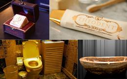 Từ toilet vàng đến bàn chải titan nghìn đô – Đây là 7 vật dụng nhà tắm đắt đỏ đến nỗi chỉ giới siêu giàu mới dám mơ