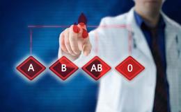 Nhóm máu nào bệnh tật ấy: Ai cũng nên biết nhóm máu của chính mình để giảm các nguy cơ