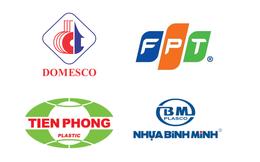 SCIC công bố thời điểm đưa ra mức giá bán cổ phần tại BMP, NTP, FPT và DMC
